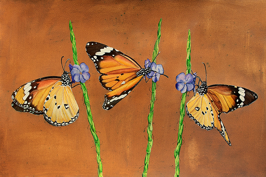 Painting Live Like Butterflies by Dianne Jane Gupta