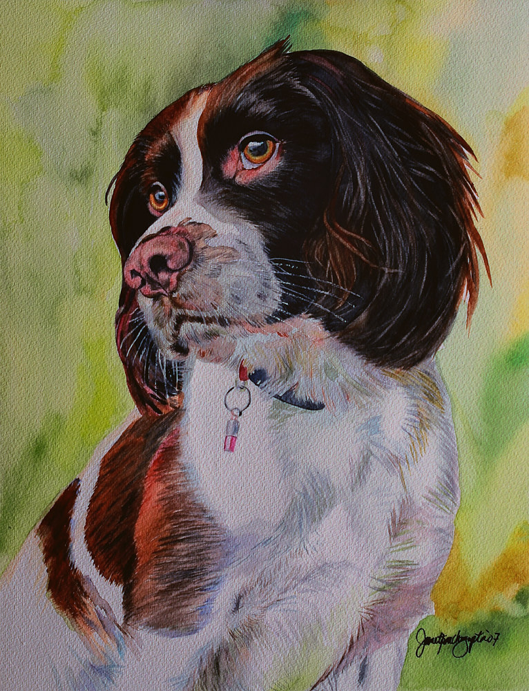 Painting English Springer Spaniel by Dianne Jane Gupta