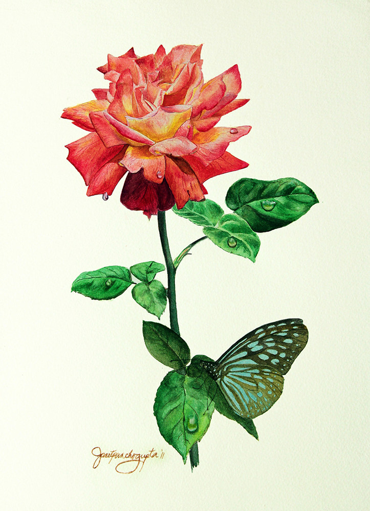 Painting Rose & Butterfly by Dianne Jane Gupta