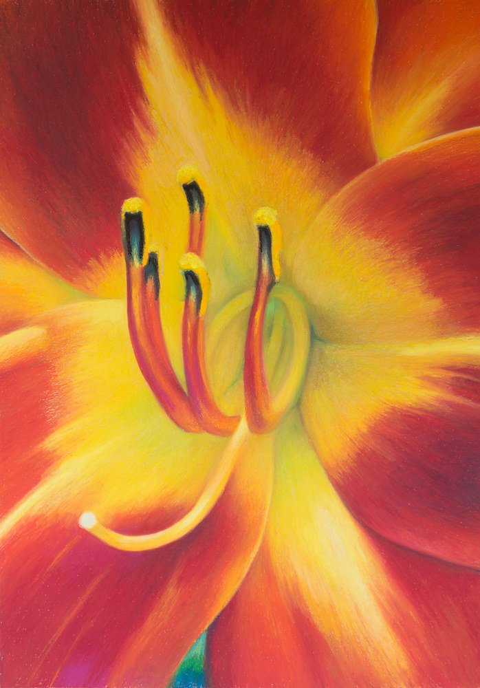 Oil painting Day Lily by Raymond Noesen