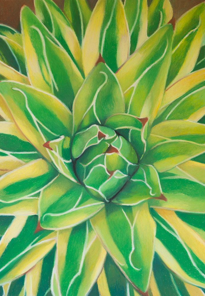 Oil painting Queen Victoria Agave by Raymond Noesen