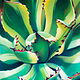Oil painting Agave by Raymond Noesen