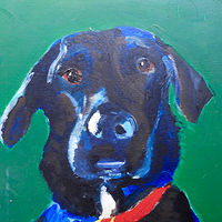 Angus, 10x10. oil on wood  by Edith dora Rey
