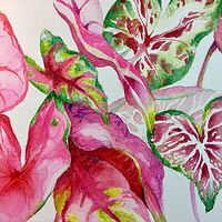 Watercolor IMG_1760 by Robert Mcelwee