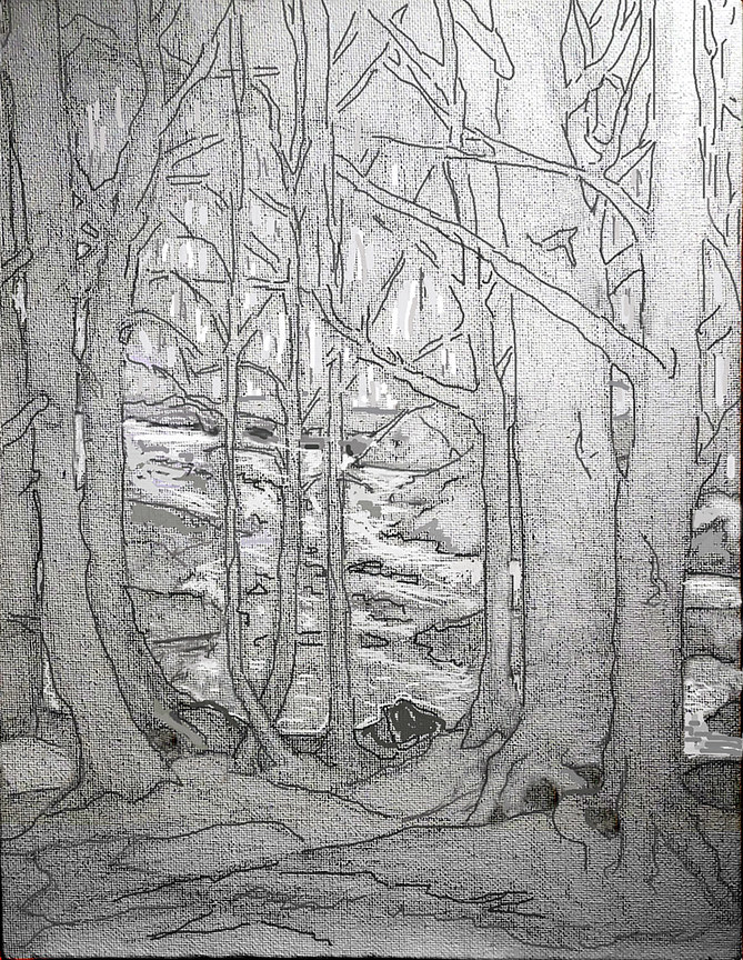 Drawing View from the Woods By The Creek by Anastasia O'melveny