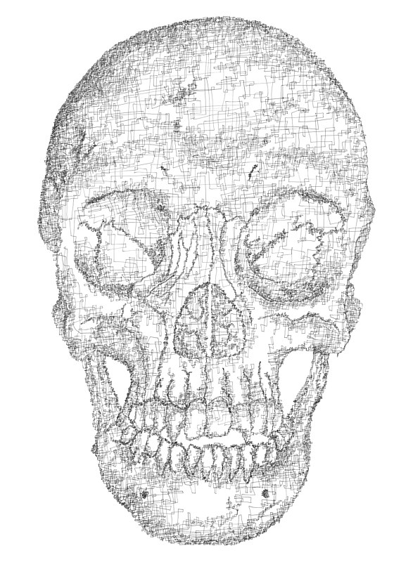 Drawing Hovig 18628 Skull 30x22 by John Hovig