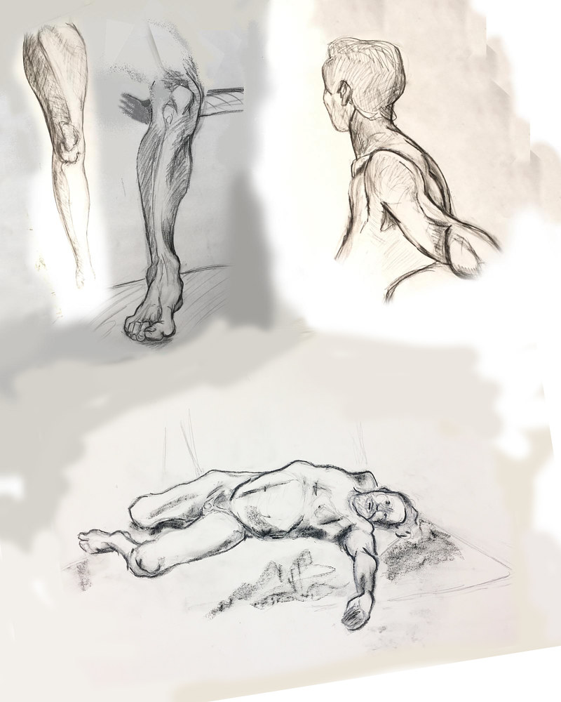 Drawing Anatomy Studies  by Anastasia O'melveny