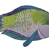 Blue-green Parrot Fish by Susan Lynch