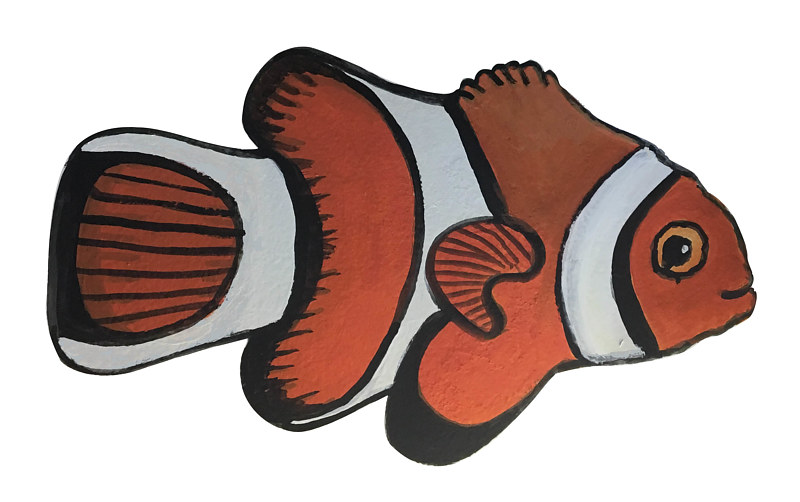 Clown Anemone Fish by Susan Lynch