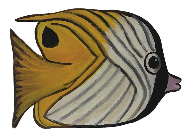 Thredfin Butterfly Fish by Susan Lynch