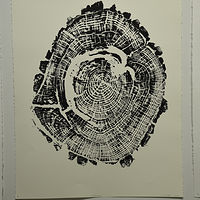 Drawing Cottonwood Woodcut by Troy Nickle
