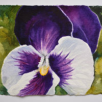 Watercolor Purple Pansy by Lisa  Baechtle