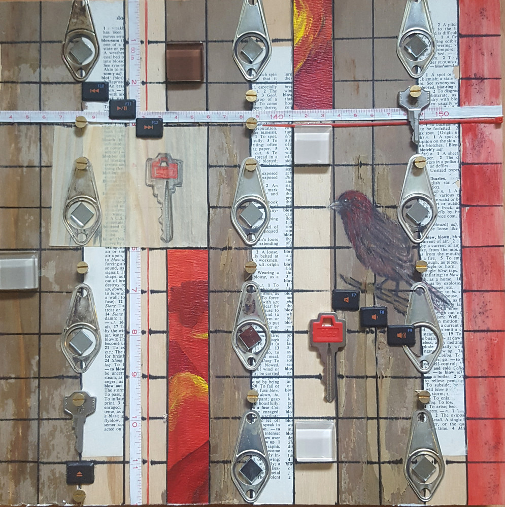 Keys to the House Finch by Sarah Peschell
