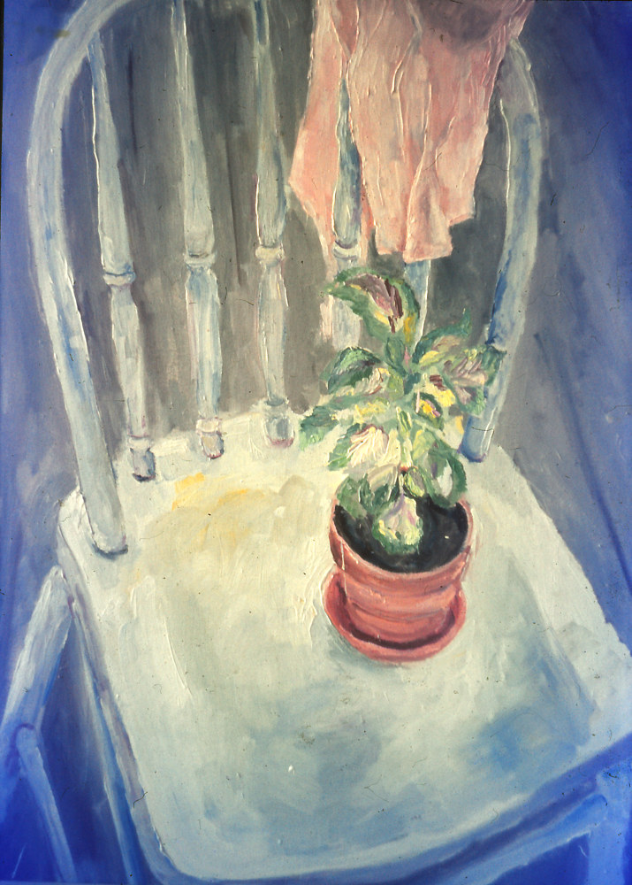 Oil painting Plant on a Chair by Kathleen Gross