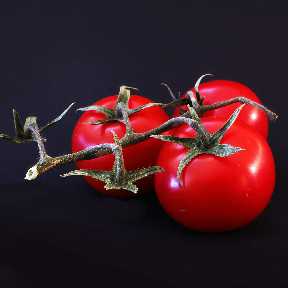 0685 - Tomatoes - web by Sharon Blake Edgar