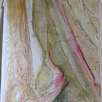 Studies of the Robes of Fra Angelico @ San Marco by Patricia Rain Gianneschi