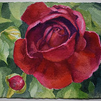 Watercolor Red Rose  by Lisa  Baechtle