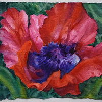 Watercolor Poppy 5 by Lisa  Baechtle