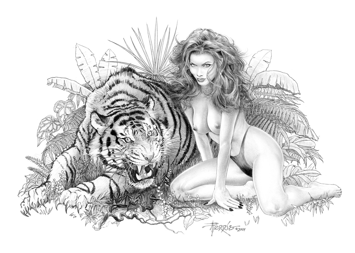 Tigress by Steve Ferris
