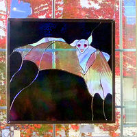Fruit Bat by Evi Cundiff