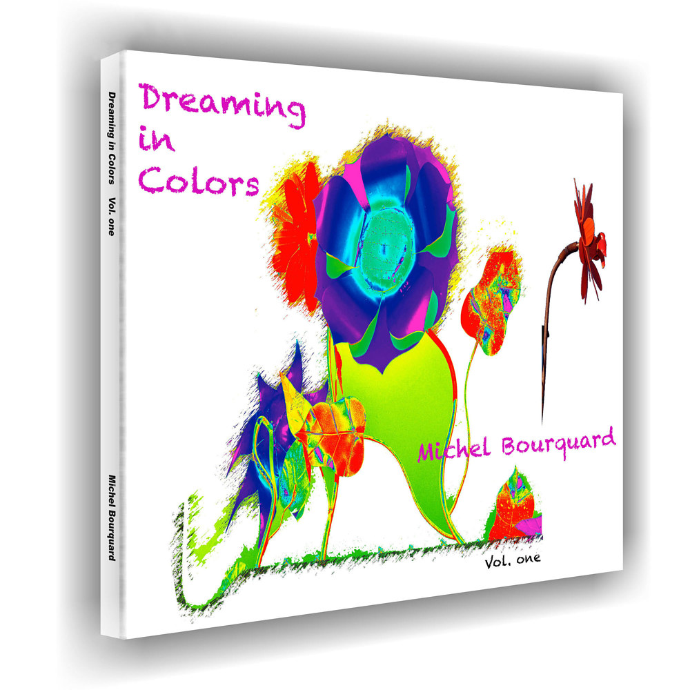 001_Dreaming in Colors Vol. one BOOK  by Michel Bourquard
