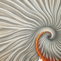Oil painting Spiraling Out by Sue Ellen Brown