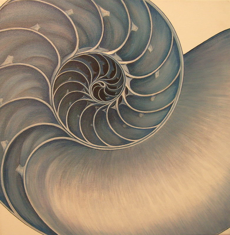 Oil painting Blue grey Nautilus by Sue Ellen Brown