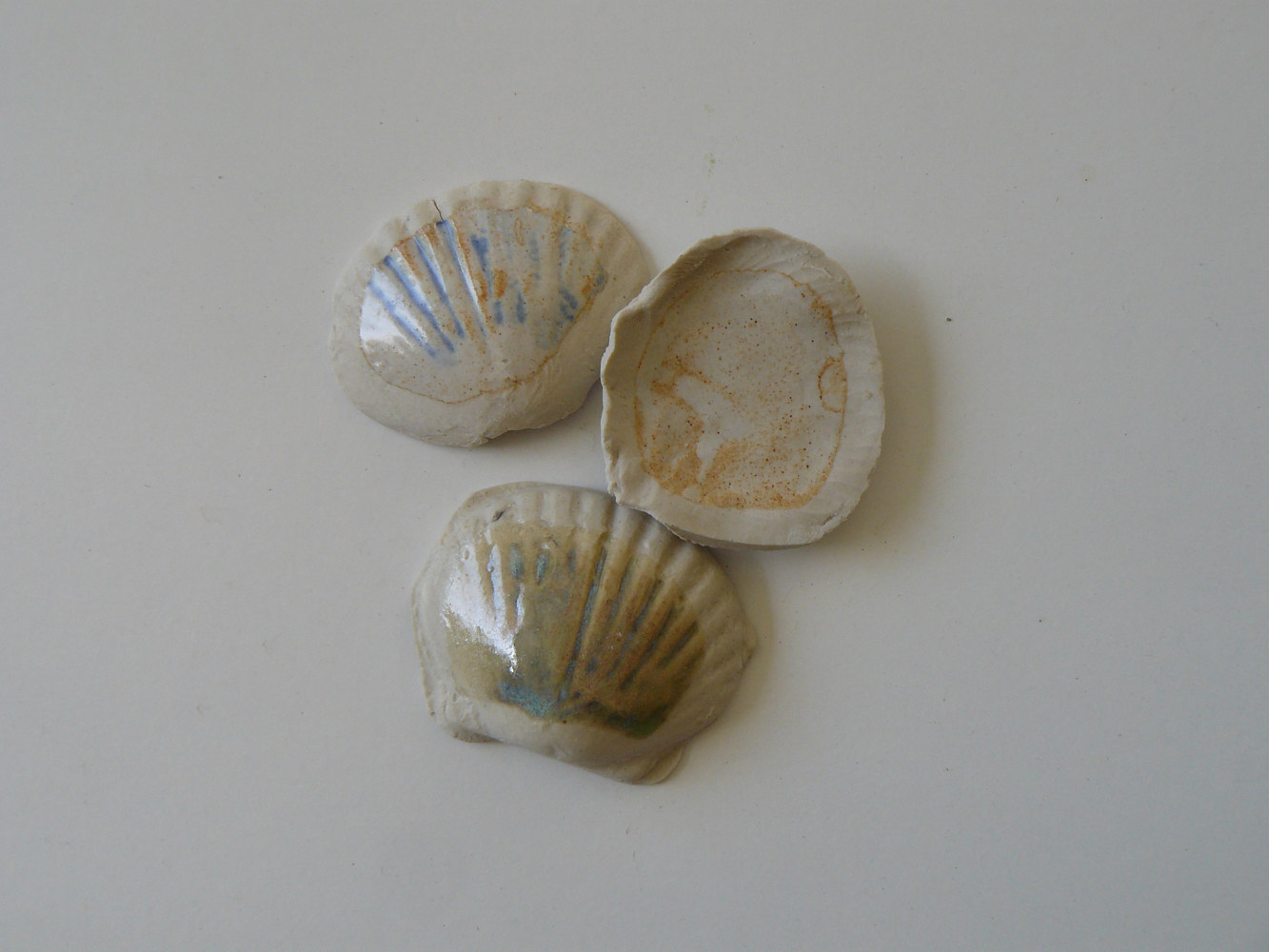Ceramic sea shells by Laurie Cochrane
