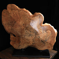 Sculpture Spalted  Maple Sculpture  by Terry Ogle