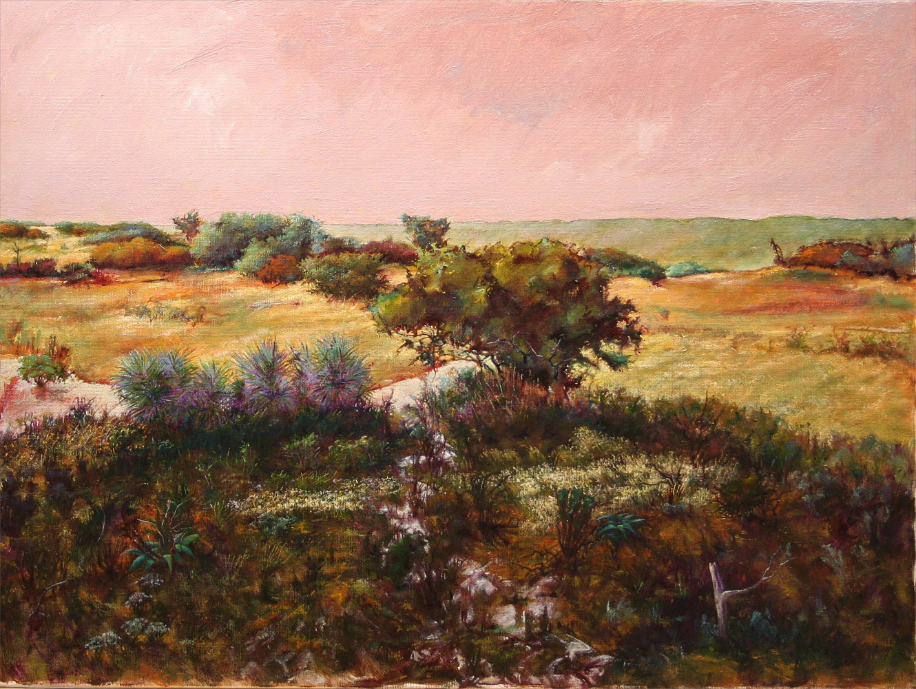 From Where the Fox Appeared, Hughes Ranch,Brady Texas 18x24 by Gary Nowlin