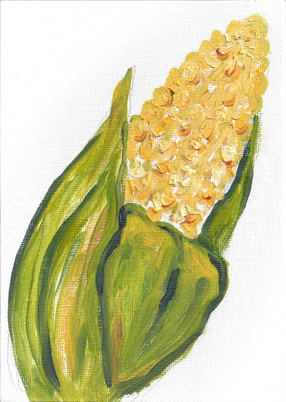 Print Apology for not listening (corn illustration) by Michelle Marcotte