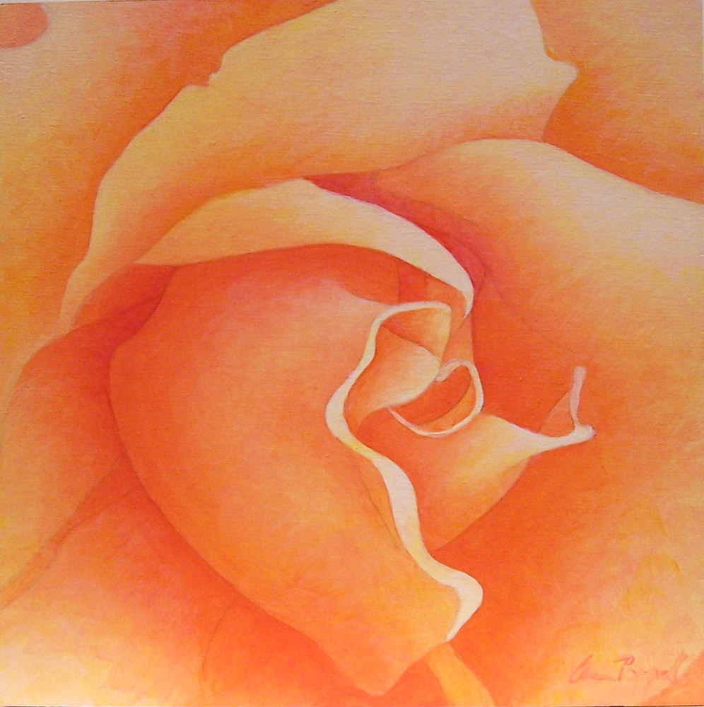 Acrylic painting Rosebud by Anne Popperwell