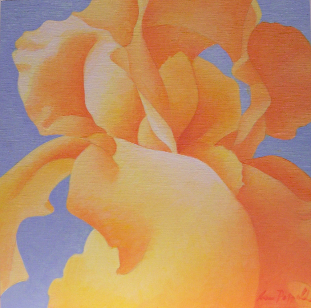 Acrylic painting Orange Iris by Anne Popperwell