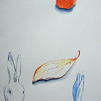 Drawing Hare and leaf by Kate Scoones