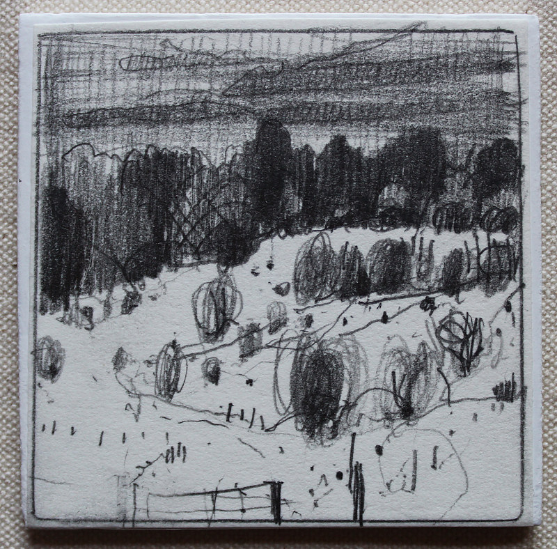 Drawing Pasture, December 17 by Harry Stooshinoff
