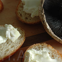 Mushrooms Brie by Heather Solomon