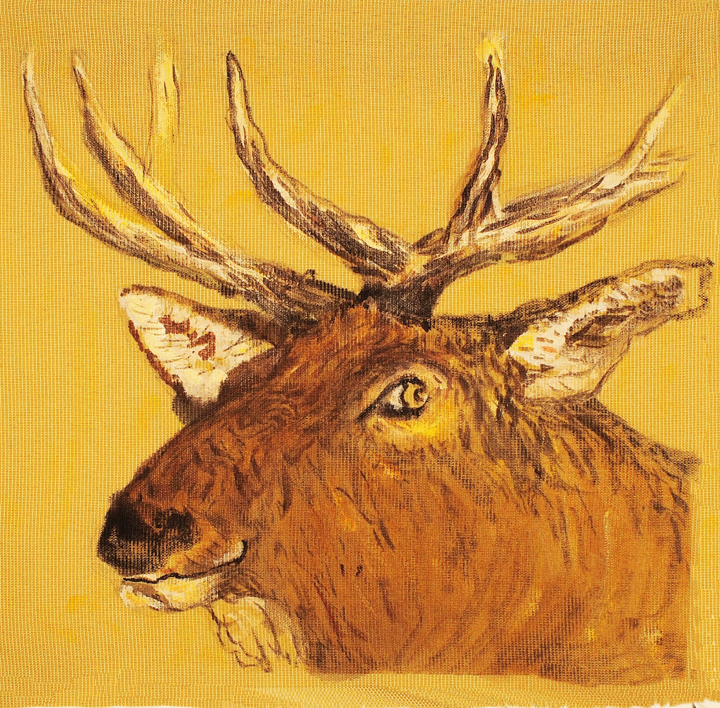 Elk by Dennis Worrel