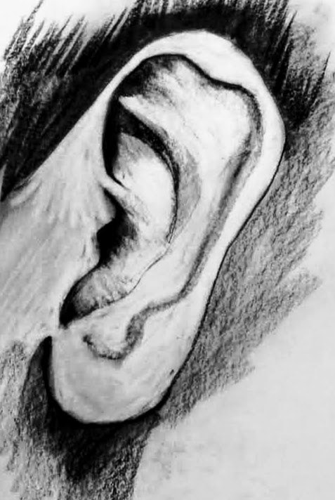 Ear - sketchbook study by John Clinock
