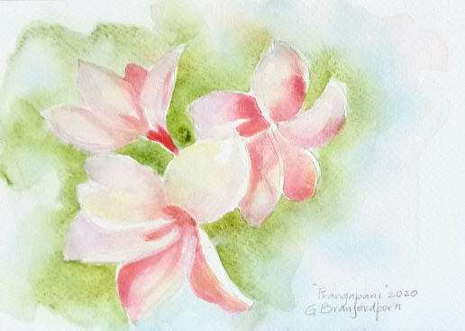 Watercolor Frangipani  by Gwenda Branjerdporn