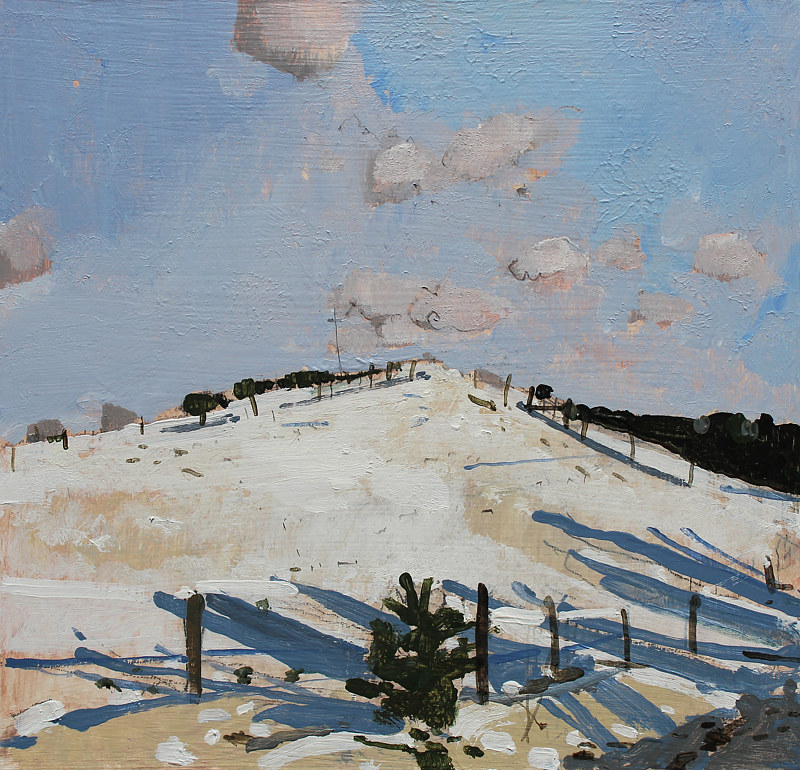 Acrylic painting Paddock Snow Shadows  by Harry Stooshinoff