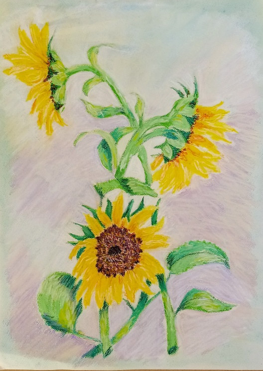 Painting The  Four Sunflowers by Gwenda Branjerdporn