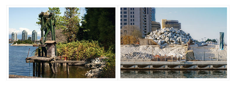 XXXIX-Rubble-Creosote Diptych by M. Simon Levin