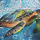 Watercolor Swimming Turtle by Elizabeth4361 Medeiros