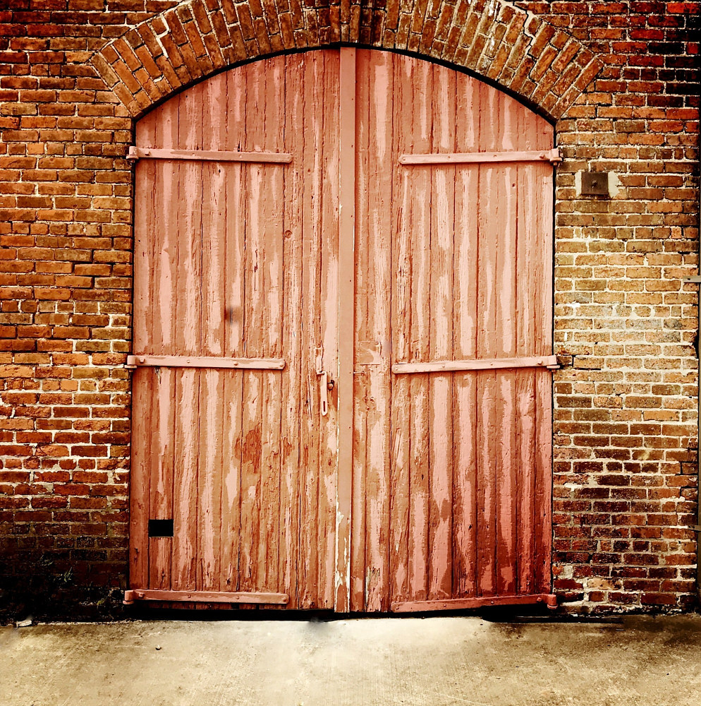 Double Red Doors, New Orleans by Susan Raines