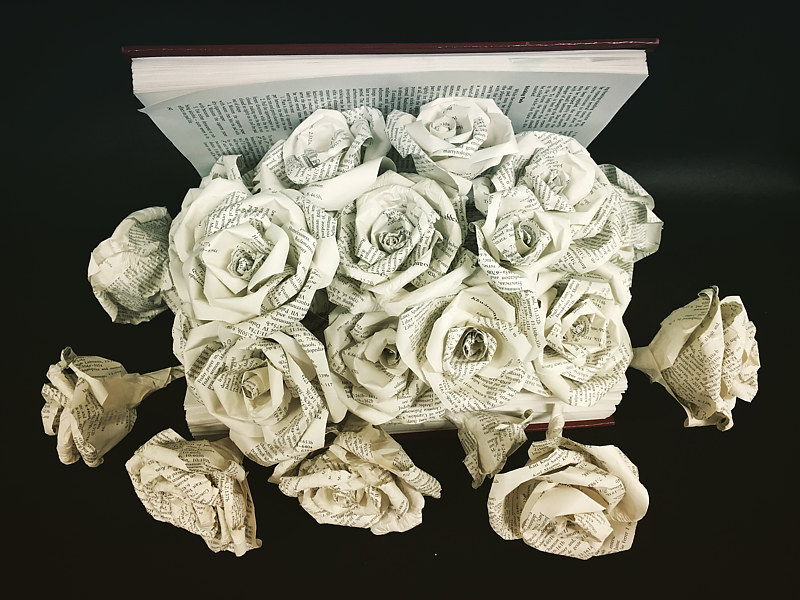 Roses - Discarded book project by Tamara Rusnak
