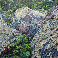 Oil painting Lichen-Covered Boulder Fields, Kennedy Lake by Michael McEwing