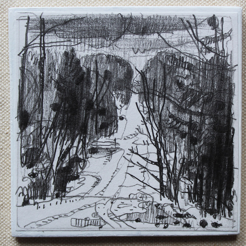 Drawing From Thoms Mountain   by Harry Stooshinoff