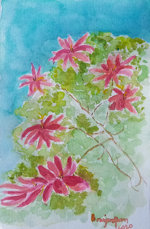 Watercolor Poinsettias by Gwenda Branjerdporn