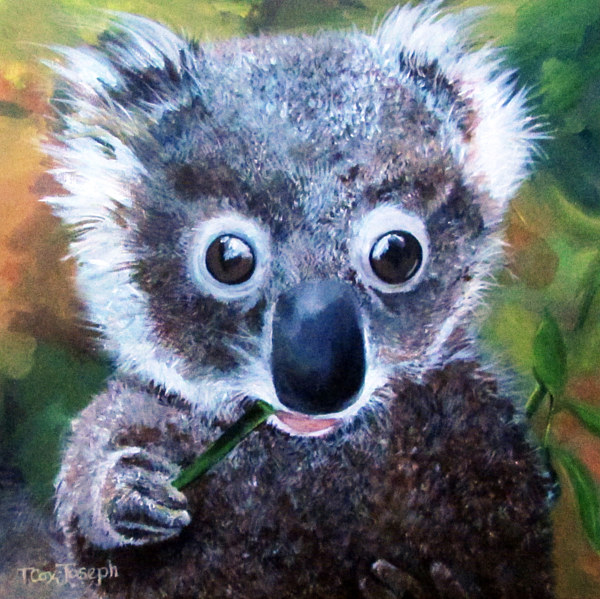 Acrylic painting Kindred Koala by Terry Cox-Joseph