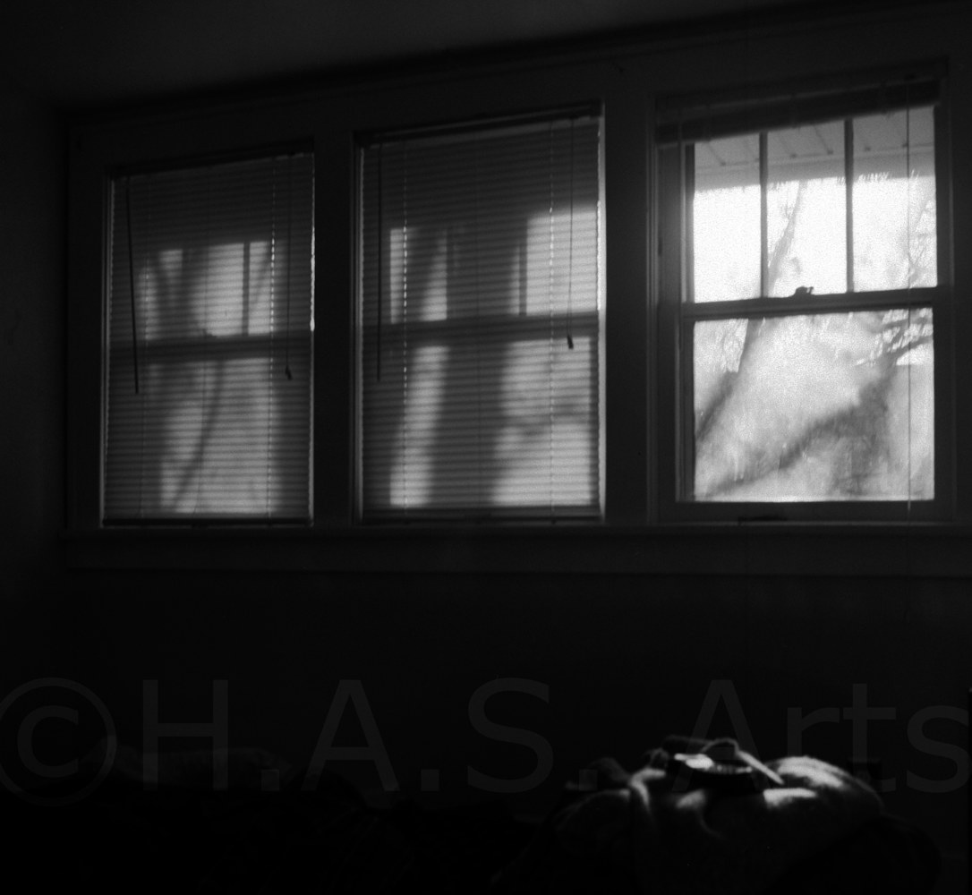Windows by Heather Solomon